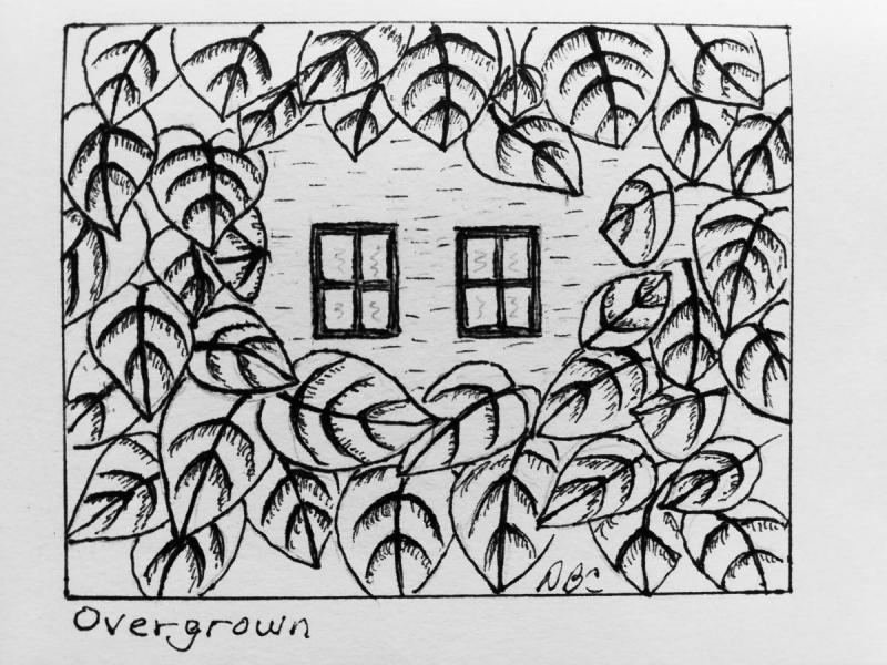 10-14- Overgrown